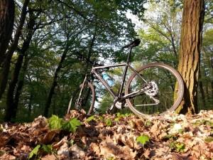 Die neuen Räder sind da! Bergamont Helix 9.3